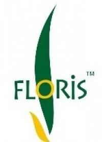 «Флорис»