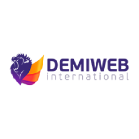 Demiweb International