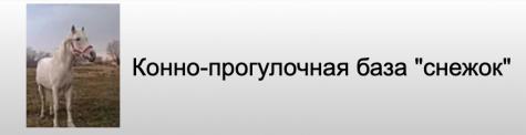 """Конно-прогулочная база """"Снежок"""""""