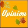 Opinion.com.ua сайт опросов