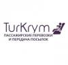 Перевозчик tur-krym.com.ua