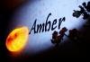 Ресторан «AMBER (Амбер)»